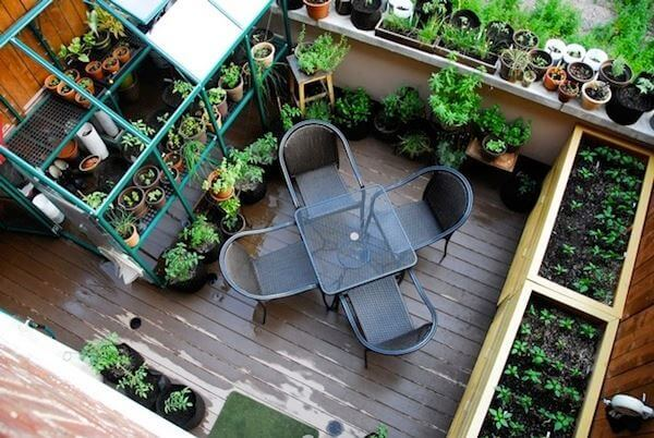 Setting up an urban allotment at home for Jardin urbain