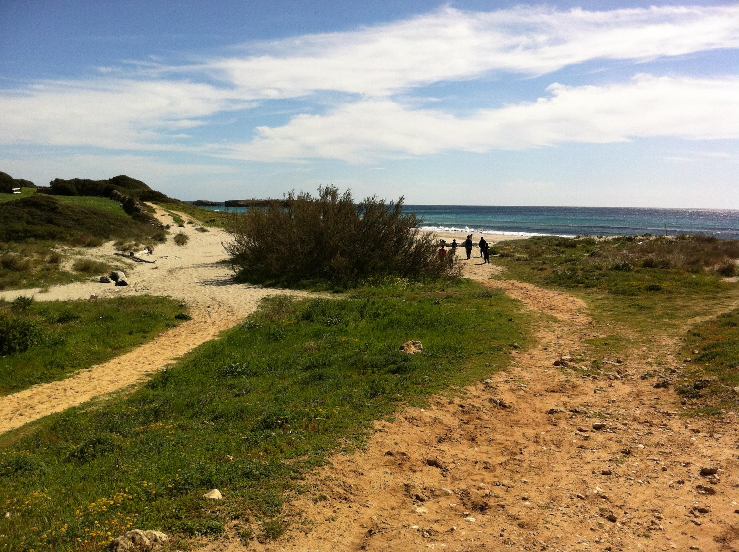 Platja Binigaus - Camí de Cavalls: from Cala Galdana to Sant Tomàs