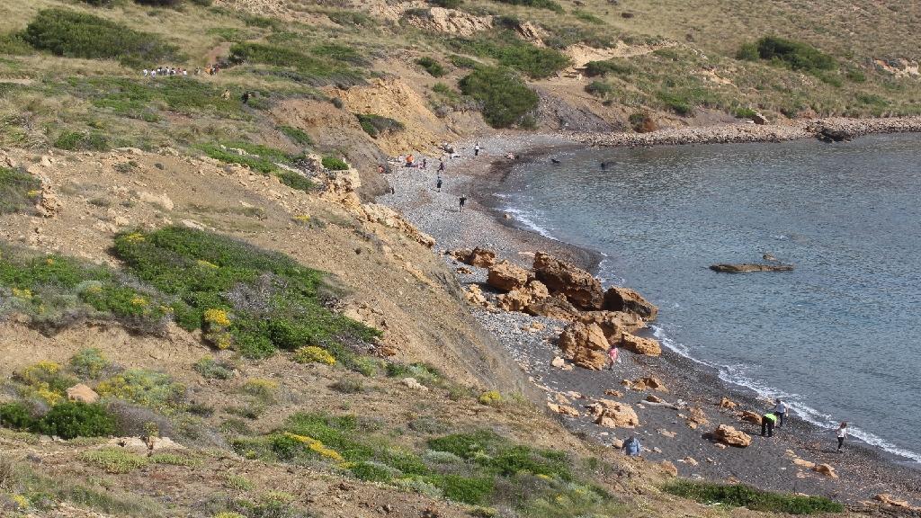 Limpiando las playas